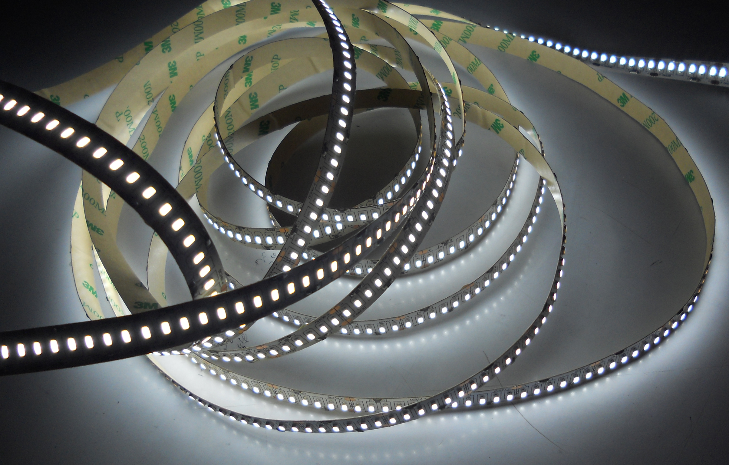 SMD3014-240leds 24W/m cool white IP20 LED flexible strip light